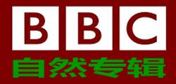 12、英国BBC自然纪录片(715部 4765集纪录片 占用磁盘2380GB)